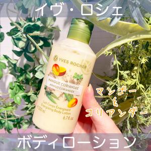 YVES ROCHER ボディローション マンゴー&コリアンダー(ボディローション・ミルク)を使ったクチコミ(1枚目)
