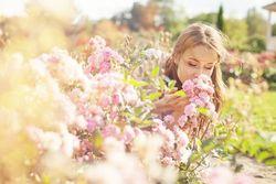 【おすすめ】本当にいい香りがする柔軟剤10選♡