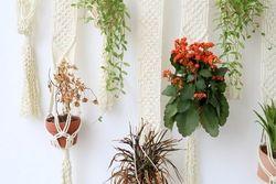 ハイセンスな部屋作り!ハンギングプランターで植物をもっと楽しむ♡