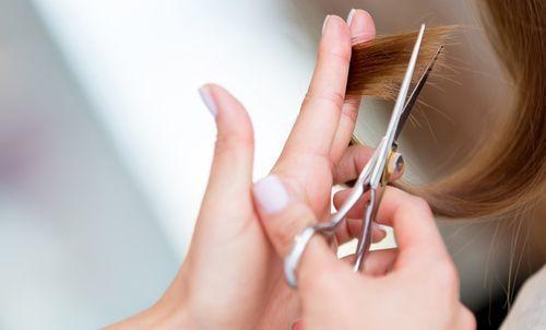 枝毛は髪からのダメージ警報!枝毛カッターよりも毎日のお手入れを!の7枚目の画像