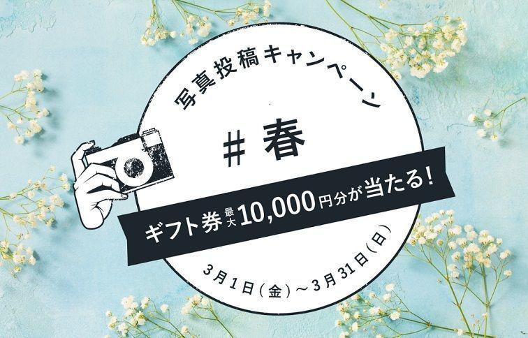 【応募終了】ギフト券が当たる!「#春」キャンペーン