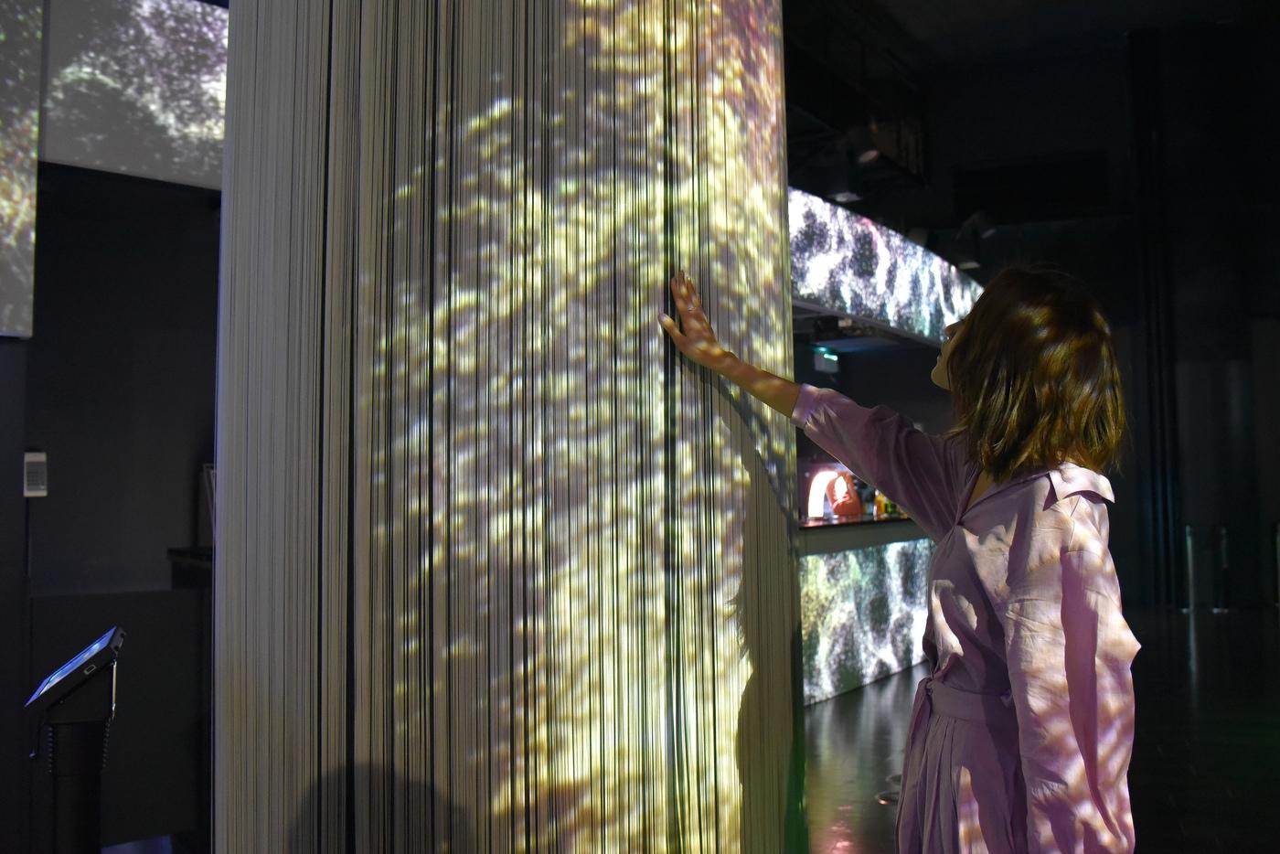 都会で楽しむ大人の水族館!フラワーアクアリウムが期間限定で開催中の10枚目の画像