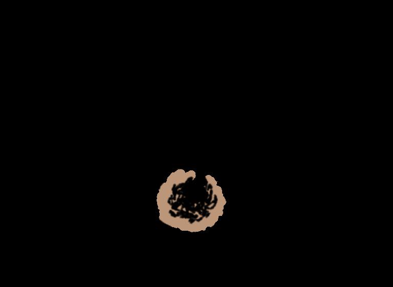 【アイブロウおすすめ人気アイテム20選】眉毛の形別に描き方も紹介の5枚目の画像