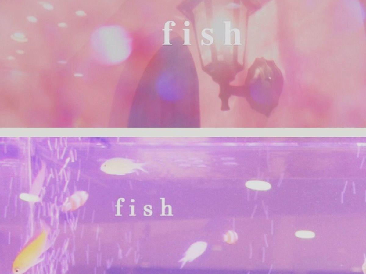 fish[フィッシュ]
