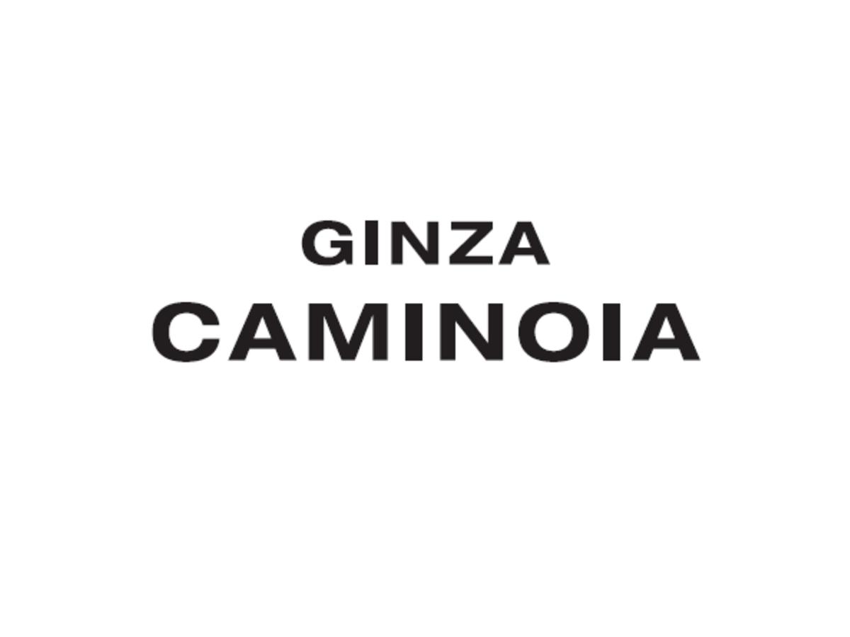 ギンザカミノア 高崎店<GINZA CAMINOIA>